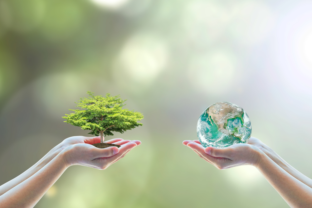 Social Responsibility and Environmental Protection at Sovcomflot