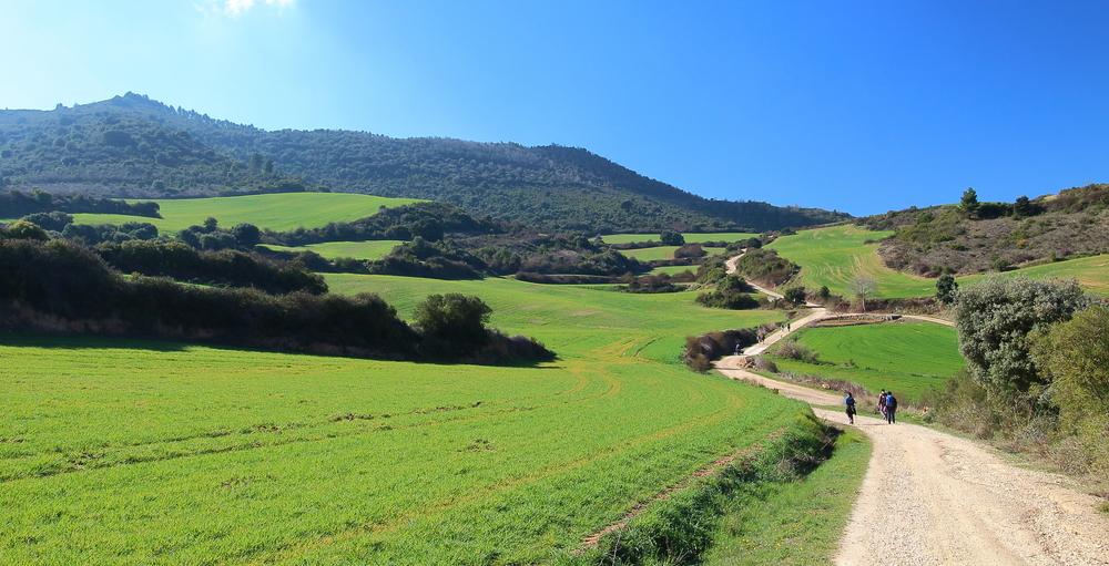 Santiago de Compostela: The Camino de Santiago Pilgrimage Trails